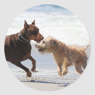 Boxer Doberman - Play Date at the Beach Classic Round Sticker