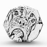Boxer Dog Acrylic Award