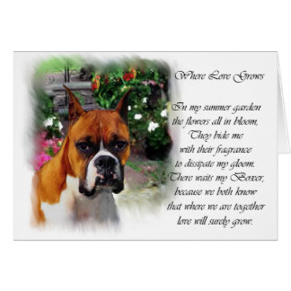 Boxer Dog Art Gifts Card