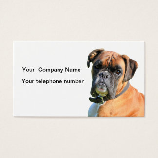 Boxer dog beautiful photo business card