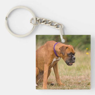Boxer dog cute beautiful photo, gift Double-Sided square acrylic keychain