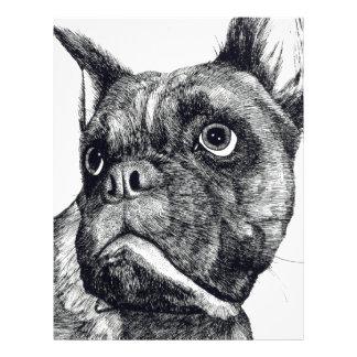 Boxer Dog Cuteness Letterhead