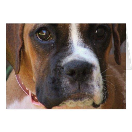 Boxer Dog Design Greeting Card