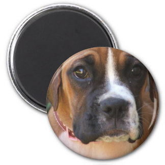 Boxer Dog Design Magnet