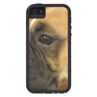 Boxer Dog Face Cover For iPhone 5