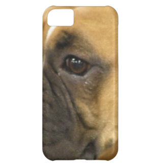Boxer Dog Face iPhone 5C Cases