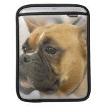 Boxer Dog Face iPad Sleeve