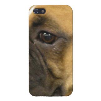 Boxer Dog Face iPhone 5 Case