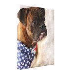 Boxer dog gallery wrapped canvas