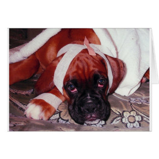 Boxer Dog 'Get Well Soon' Card