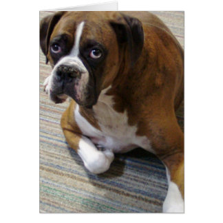 Boxer Dog Greeting Card