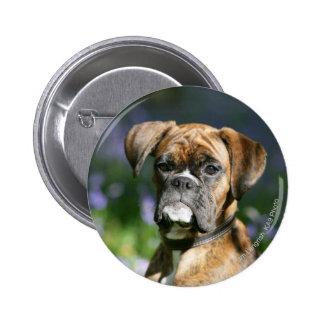 Boxer Dog Headshot Button