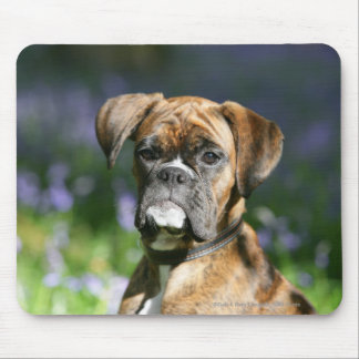Boxer Dog Headshot Mouse Pad