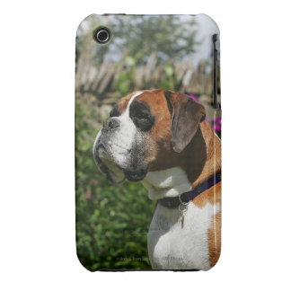 Boxer Dog in the Flowers Case-Mate iPhone 3 Case