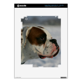 Boxer Dog in the Snow Decal For iPad 3