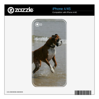 Boxer Dog in Water iPhone 4 Skins