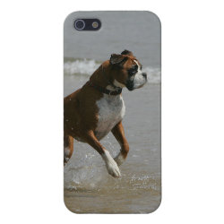 Case Savvy iPhone 5 Matte Finish Case with Boxer Phone Cases design