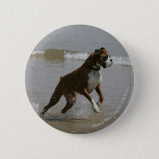 Boxer Dog in Water Pinback Button
