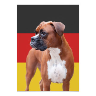 Boxer dog custom announcements