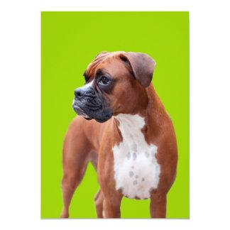 Boxer dog 5x7 paper invitation card