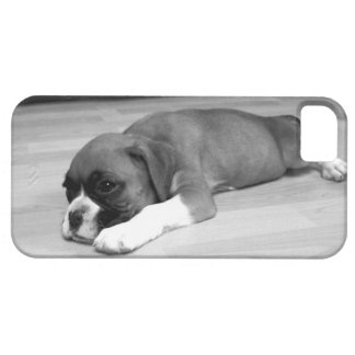 Boxer dog iPhone 5 Barely There Universal Case iPhone 5 Case