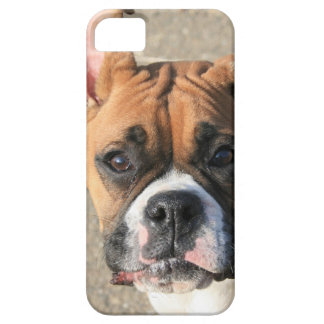 Boxer dog iPhone 5 Barely There Universal Case iPhone 5 Covers