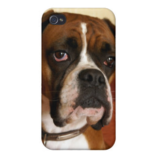 Boxer Dog Case For iPhone 4
