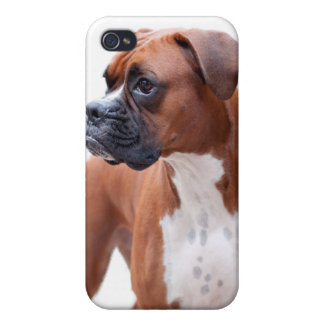 Boxer dog iPhone case iPhone 4 Cases