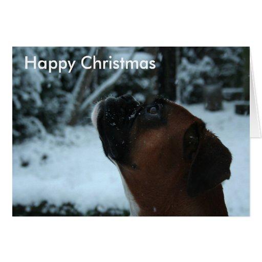 Boxer dog jolie Christmas Card