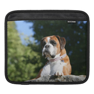 Boxer Dog Laying on a Rock iPad Sleeve