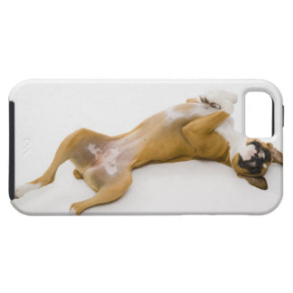 Boxer dog laying on her back on the floor iPhone SE/5/5s case