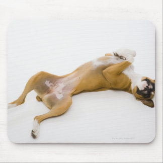 Boxer dog laying on her back on the floor mouse pad