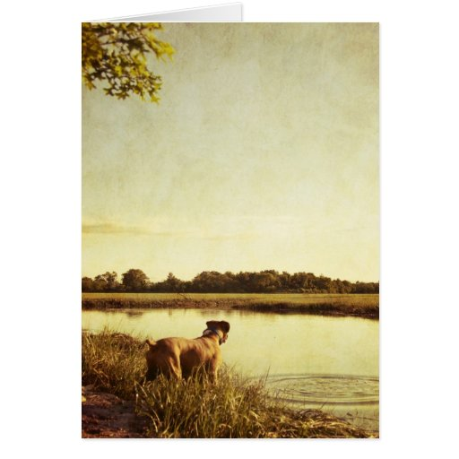 Boxer Dog Note Card