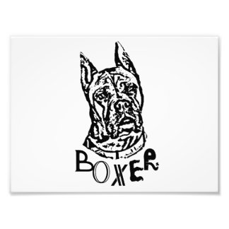 Boxer Dog Photo Print