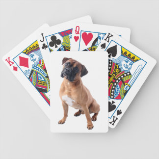 Boxer Dog playing cards