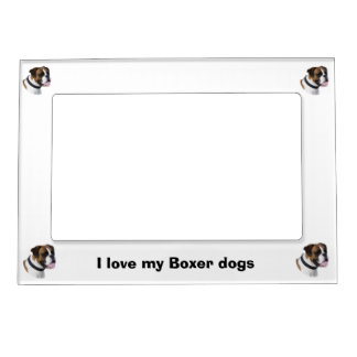 Boxer dog portrait photo magnetic frame