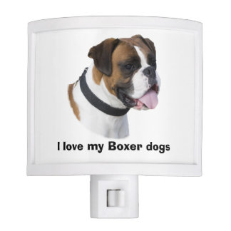 Boxer dog portrait photo night light
