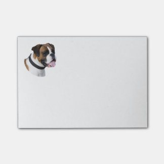 Boxer dog portrait photo post-it notes