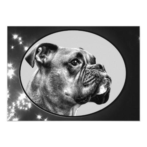 Boxer dog profile card