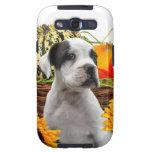 Boxer dog Samsung Galaxy Case Samsung Galaxy SIII Cases