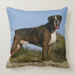 Boxer Dog Show Stance Pillow