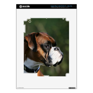 Boxer Dog Side Profile Decals For iPad 3