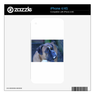 Boxer Dog Skin For iPhone 4S