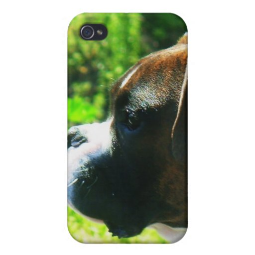 Boxer dog Speck case iPhone 4/4S Cases