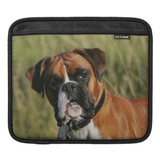 Boxer Dog Staring at Camera iPad Sleeve