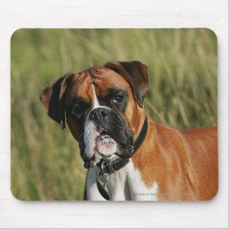 Boxer Dog Staring at Camera Mouse Pad