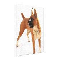 boxer dog stretched canvas print