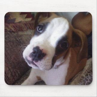 Boxer Dog Sugar Baby Puppy Mousepad