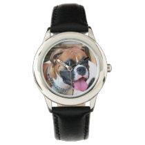 Boxer Dog Watch