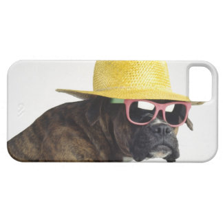 Boxer dog with hat and glasses iPhone SE/5/5s case